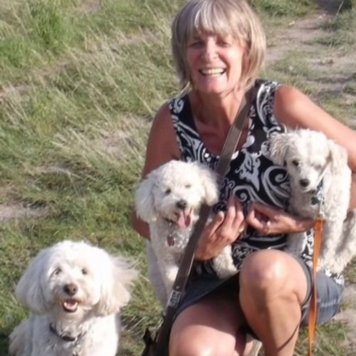 Pet Care Provider Patricia F Gallery Image 1