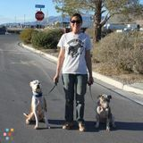 Dog Walker, Pet Sitter in North Las Vegas