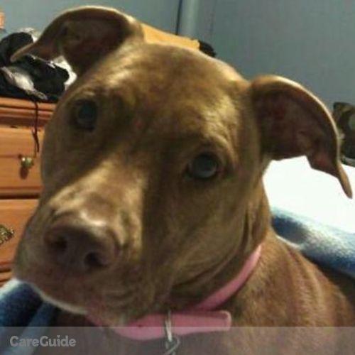 Pet Care Provider Russ R's Profile Picture