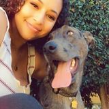 I am a very caring House and Pet Sitter in La Mesa, California