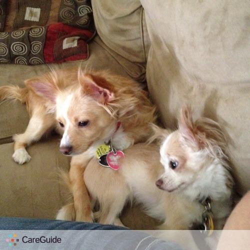 Pet Care Provider Sabrina Brummet's Profile Picture