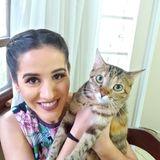 Cat Baby Sitter