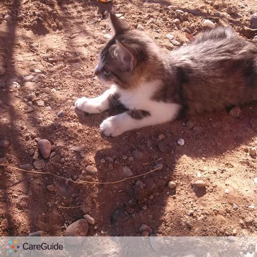 Pet Care Provider Mercedes I's Profile Picture
