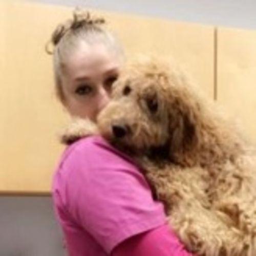 Pet Care Provider Jenn L's Profile Picture