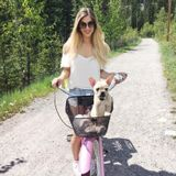 Canmore/Banff Pet sitter available!