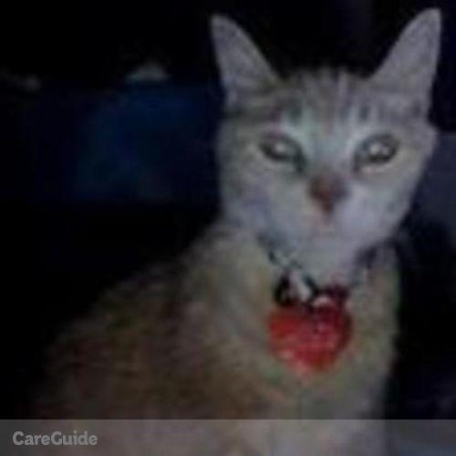 Pet Care Provider Elizabeth Dickson's Profile Picture
