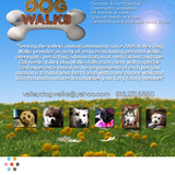Valley Dog Walks Serving all of the SFV :)
