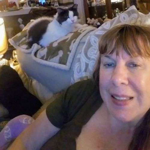 Tarpon Springs Pet Sitter Interested In Being Hired