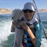 Phoenix Pet Sitter Looking For Being Hired