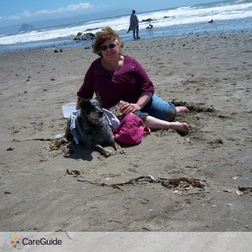 Pet Care Provider Paula R's Profile Picture