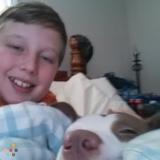 Dog Walker, Pet Sitter in Scottsville