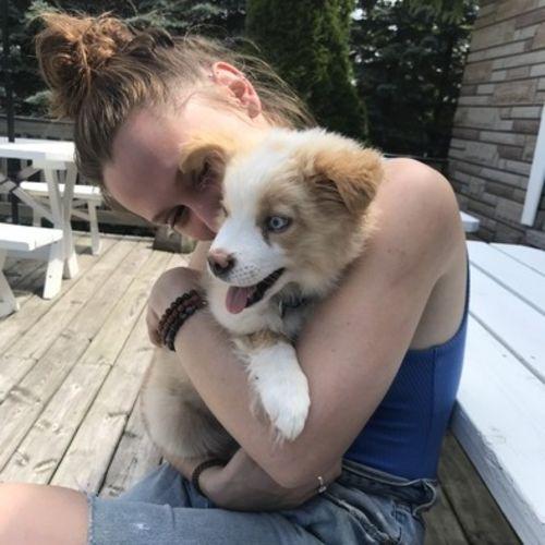 Loving Animal Caregiver!