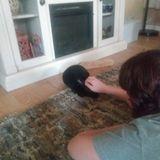 Interested In Mount Dora Pet Service Provider, Florida Jobs