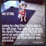 Dog Walker, Pet Sitter in Long Beach