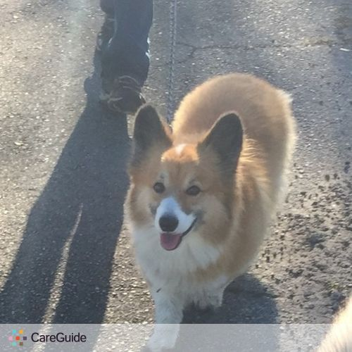 Pet Care Provider Alice B's Profile Picture