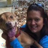 Dog Walker, Pet Sitter in Ellington