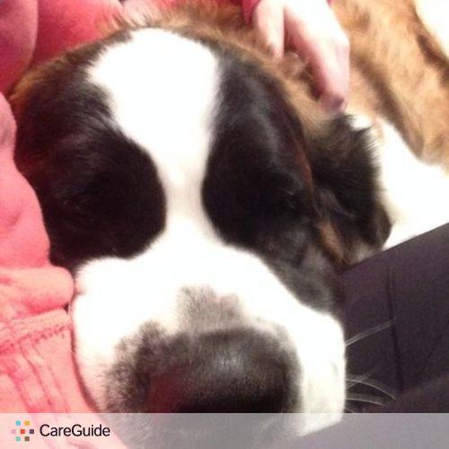 Pet Care Provider Krista H's Profile Picture