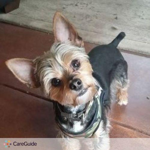 Pet Care Provider Shyla Hardy's Profile Picture