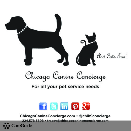 Pet Care Provider Chicago Canine Concierge's Profile Picture