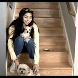 Interviewing For Nacogdoches Pet Sitting, Texas Jobs