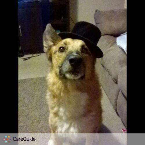 Pet Care Provider Kayce A's Profile Picture