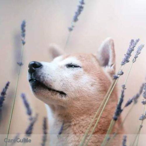 Pet Care Provider Alexandra Walden's Profile Picture