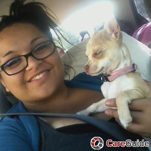 Pet Care Provider Allysun Apaez's Profile Picture