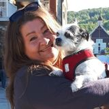 Trustworthy, mature, experienced pet sitter available; non smoker. Your home or mine. Toronto