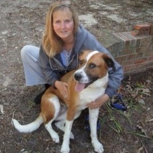 Pet Care Provider Cynthia Midgett's Profile Picture