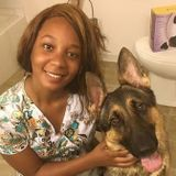 VET TECH WITH 10 years experience In animal care ! Interested In Job Opportunities in Hampton roads!