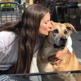 Experienced Pet Lover & Sitter in Wenatchee