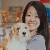 Pet Caregiver with Kennel and Veterinary Experience