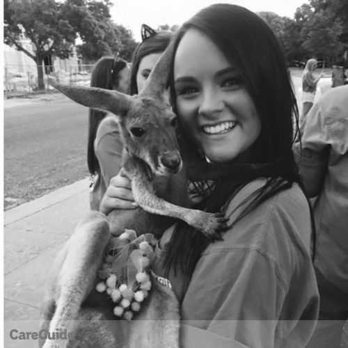 Pet Care Provider Taylor P's Profile Picture