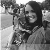 Dog Walker, Pet Sitter in Southlake