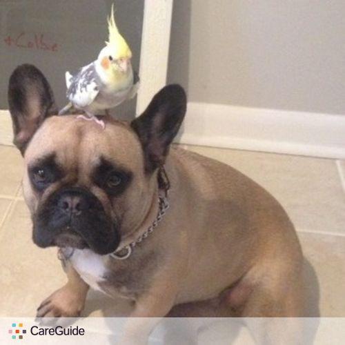 Pet Care Provider Regina J's Profile Picture