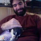 Dog Walker, Pet Sitter in Bethesda
