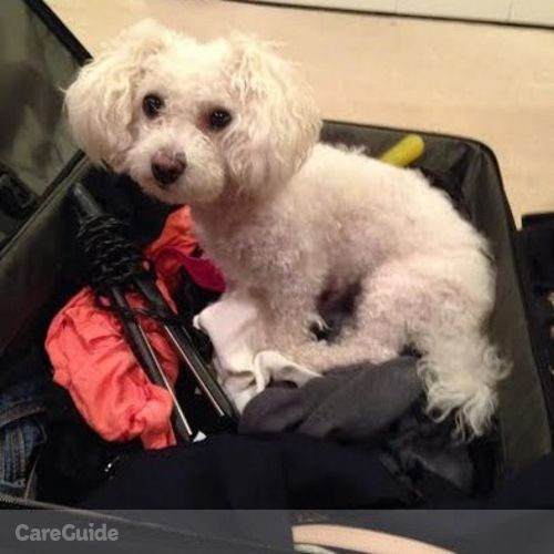 Pet Care Provider Christina Hemp's Profile Picture