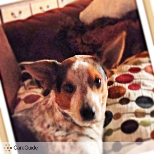 Pet Care Job Kari M's Profile Picture