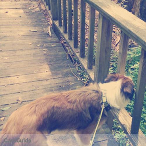 Pet Care Provider Ashley Pruitt's Profile Picture
