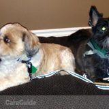 Pet Care Job in Sudbury