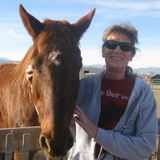 Fort Collins ..pet care/Sitter from exotics to Equine.