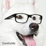 Dog Walker, Pet Sitter in Queens