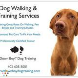 Dog Walker, Pet Sitter in Calgary