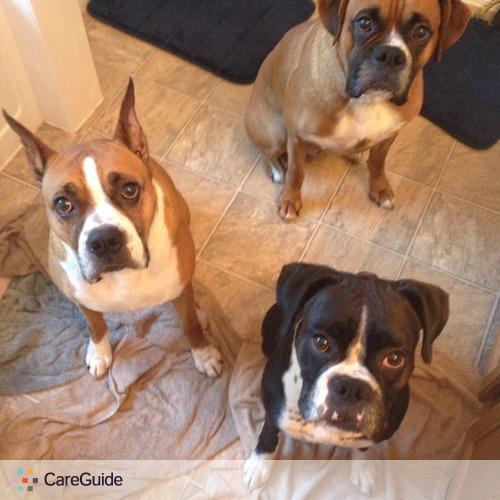Pet Care Job Erin Carlson's Profile Picture