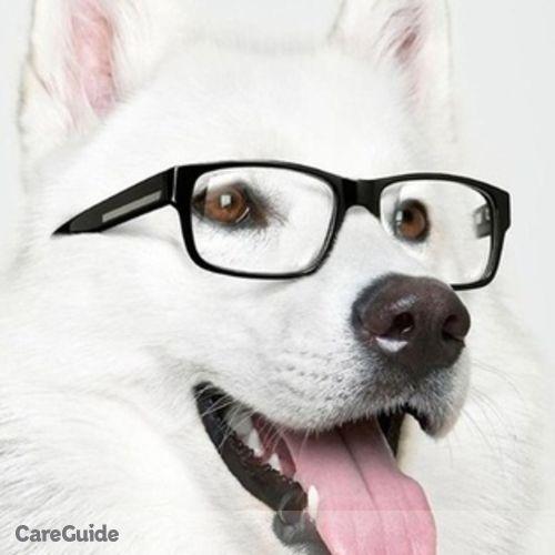 Pet Care Provider Lillian C's Profile Picture