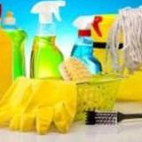 Disciplined House Cleaner Available Immediately