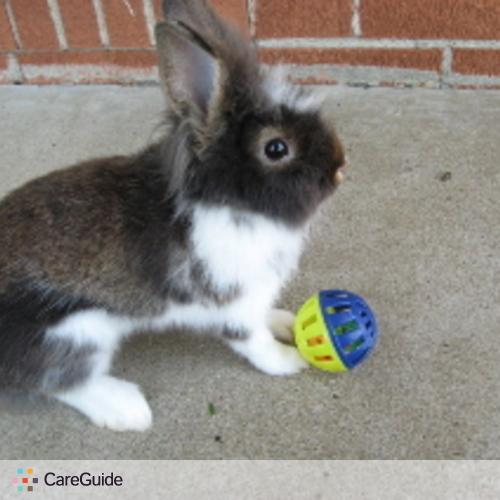Pet Care Provider Lydia L's Profile Picture