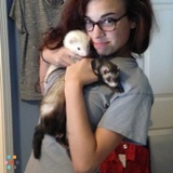 Pet Sitter in Wake Forest