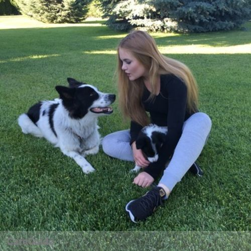 Pet Care Provider Alina Babak's Profile Picture
