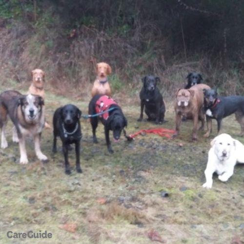 Pet Care Provider Jeff Church's Profile Picture
